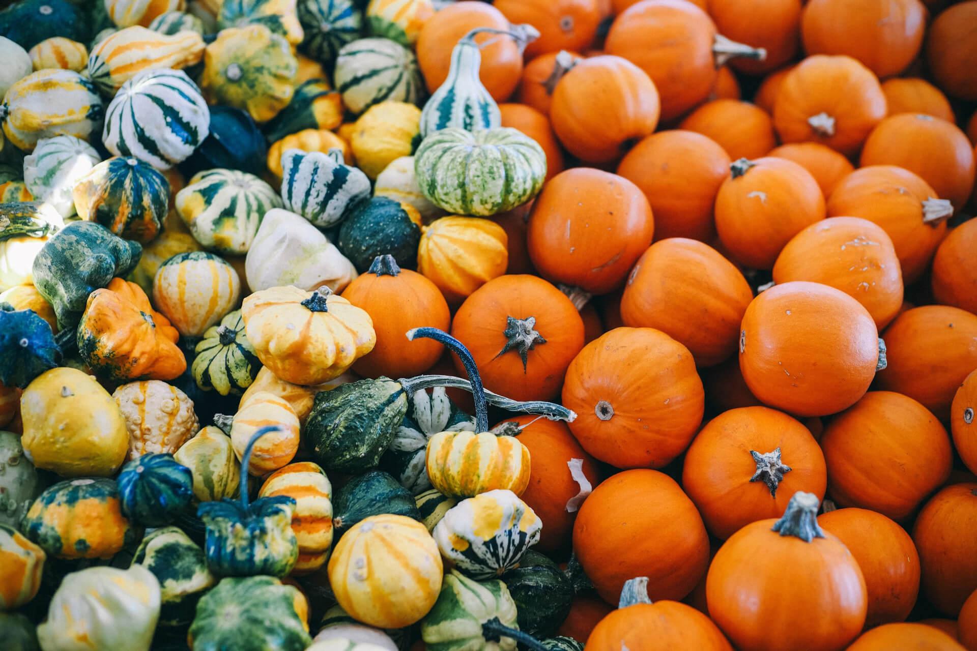 Reasons to Visit Nantucket This Fall